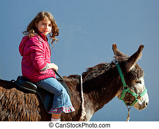 donkey mule with kid little girl riding happy