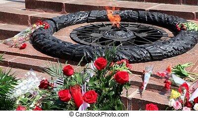 Flowers Lay Near Eternal Fire