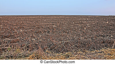 arable field extends to the horizon