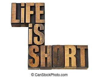 life is short phrase in wood type