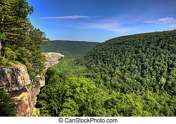 Hawksbill Crag Hiker - This famous place on the Whitakers...