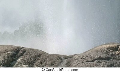 Pohutu Geyser close up