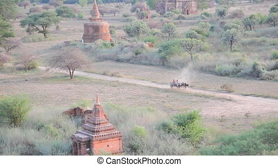 Cart in Bagan - Bagan
