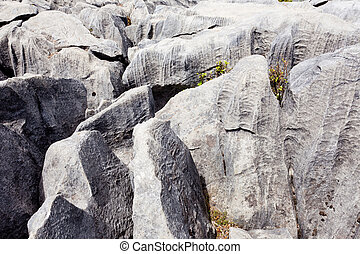 Rainwater carved marble rock called karren - Limestone rock...