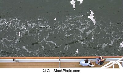Seagulls fly near tourist liner, time lapse - Seagulls fly...