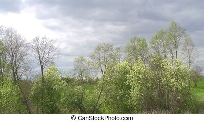 spring landscape - cloudy sky, variable sunlight