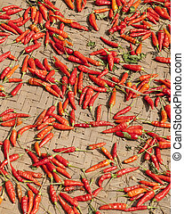Peppers Drying in Sun in Vuangeko Village, World Heritage...