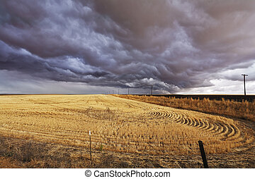 The thundercloud above a field - Improbable thundercloud...