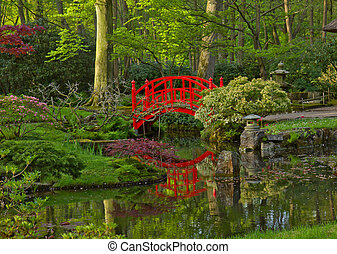 Japanese garden with bridge - Japanese garden with red...
