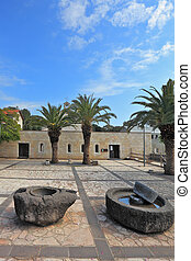 Ancient rocks to get olive oil, and palm trees - Courtyard...