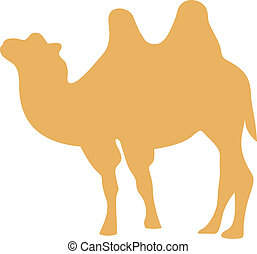 Vector illustration of camel
