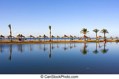 Beach in Egypt - Reflection of palms on a beach in Egypt