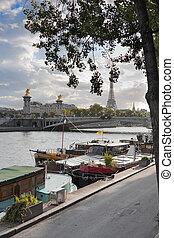 Paris - Idilic scene in the Seine river in Paris, France.