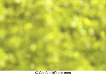 defocussed summery foliage - defocussed bokeh of green...