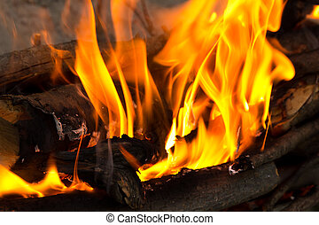 Fire, burning branches of a tree on a barbecue