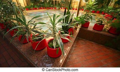 Center of winter garden under glass roof, many plants...