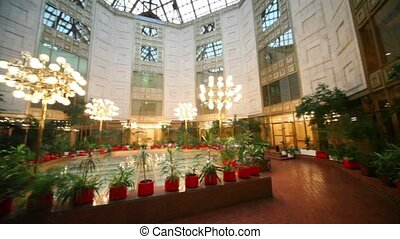 Winter garden under glass roof, many plants around,...