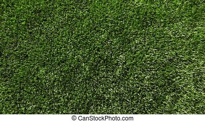 Green artificial grass of soccer field, part of gate for...