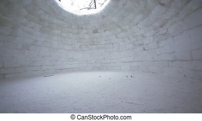 Inside empty house of ice, eskimo igloo, trees visible through hole in roof