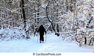 boy skiing in warm sport clothes at forest covered by snow -...