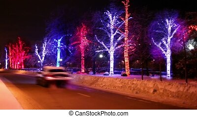 Trees are decorated with garlands stand along the road on which vehicles travel away