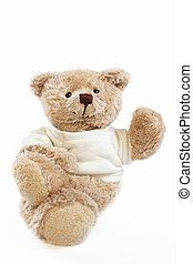 Teddy bear doll - A Teddy bear doll isolated on white...