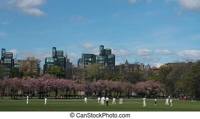 Time lapse of a cricket match in the Meadows Park in...