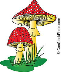 Toadstool in grass - vector illustration.