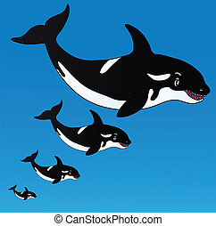 Orcas in the ocean - vector illustration.