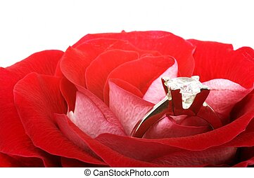 Red rose with diamond ring