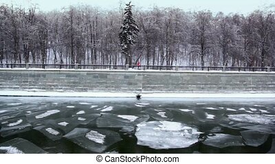 Wall promenade, forest on shore in winter, ice fragments in...