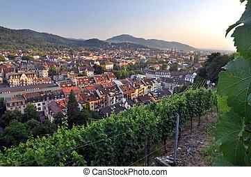Freiburg - Stadt Freiburg von der Rebe auf dem Schloßberg