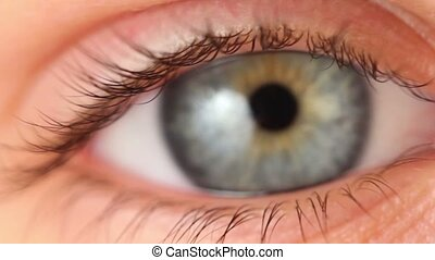 Single eye closeup, eyelid lifts and pupil expands, blinking...