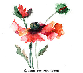 Watercolor illustration of poppy flower - Watercolor...