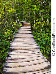 Pathway in Plitvice lakes park at Croatia - travel...