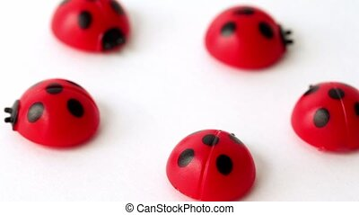 Five toy ladybirds lay in ring, composition rotates