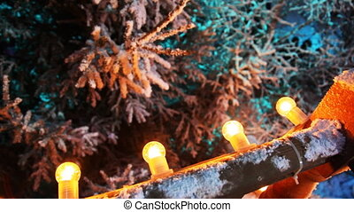 number of festive bulbs illuminate winter forest, then view...