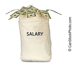Bag with salary