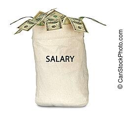 Bag with salary