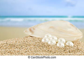 Sea shell with great white pearl