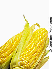 Corn - Ear of Corn isolated on a white background