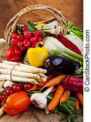 Vegetables - Basket full of various fresh organic vegetables...