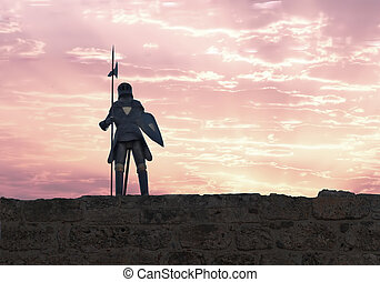 Knight with halberd - A knight with halberd in black armour