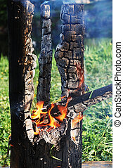 árbol, medio, tronco, quemado, ardiendo fuego lento, afuera