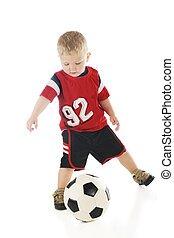 Tiny Athlete - An adorable 2 year-old in his sport shirt and...