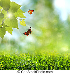 summer time. abstract optimistic backgrounds with flying butterfly