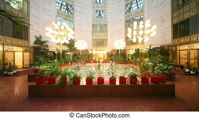 Winter garden under glass roof, many plants around, upward...