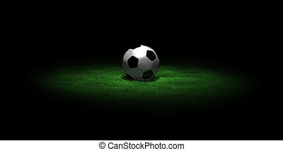 soccer ball on grass in the dark - a 3D scene with a soccer...