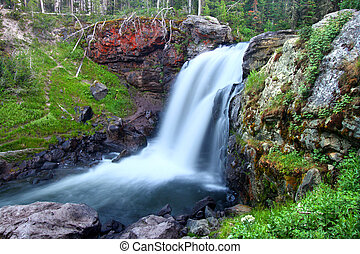 Moose Falls Yellowstone National Park - Beautiful Moose...