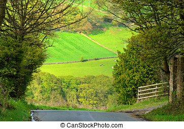 Bradfield Dale - Hoar Stones Road in Bradfield Dale South...